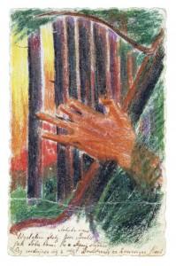 Miško ošimas, 1903 10 11
