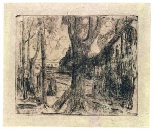 Medžiai-medis-1905-1906